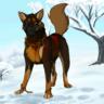 Dasker Wolf