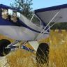 Piper J3 Super Cub