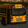 2016 Bluebird All American T3FE School Bus